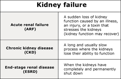 Three Stages of Kidney Failure image