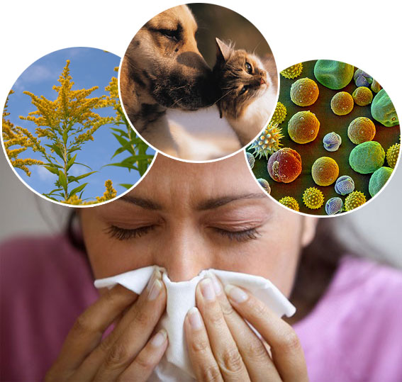 seasonal allergy homeopathic treatment